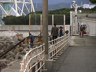 Tanagawa14.jpg
