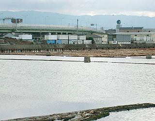 mokuzai-co9.jpg
