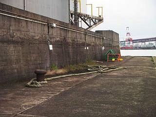namihaya2009-16.jpg