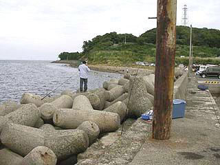 tanigawa12.jpg