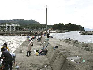 tanigawa15.jpg