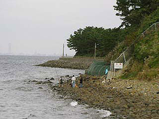 tanigawa17.jpg