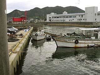 tanigawa20.jpg