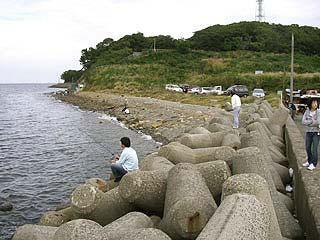 tanigawa22.jpg