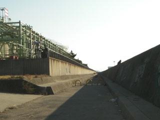 tatiuo2009-10.jpg
