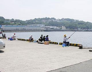 wakayama-unknou1.jpg