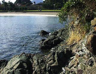 yamasiro21.jpg